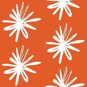 Floral Asterix Citrus Snow