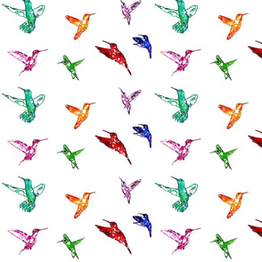 Hummingbirds Rainbow