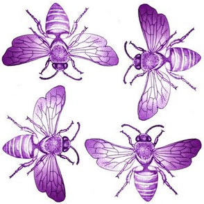 Bees of Jupiter in Purple