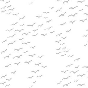 Seagulls Gray