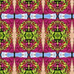 Pink flowers, green leaves