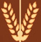 Wheat of Kherson