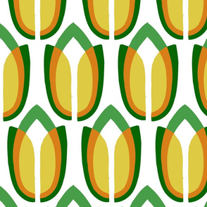 tulipa3