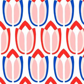 tulipa9