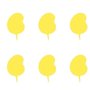 11 bird