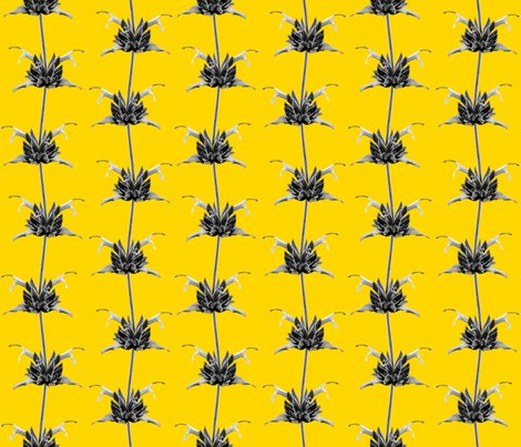 Hummingbird_sage_monochrome_on_yellow_shop_preview