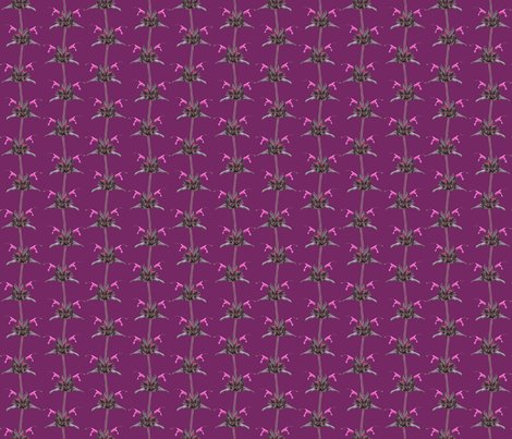 Hummingbird_sage_small_on_magenta_shop_preview