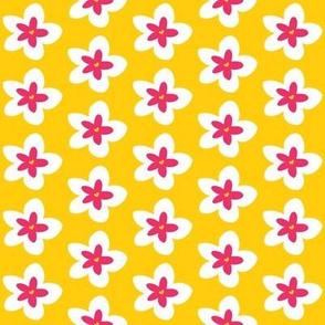 Plumeria on Yellow