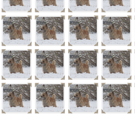 Cairn in the Snow fabric by mccormickcairns on Spoonflower - custom fabric