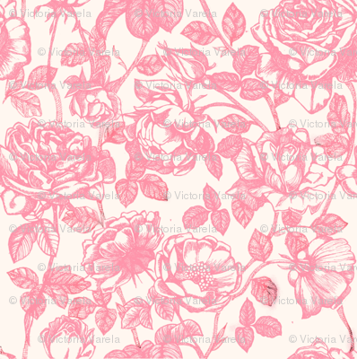 Toile de Jouy roses_pink