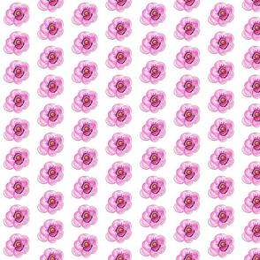 Feminine Flower-ch