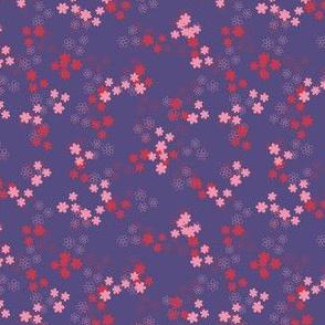 1a_daisy