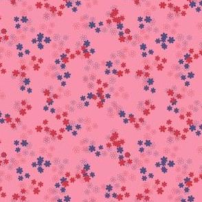 1b_daisy