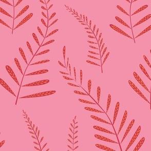 ferns pink orange