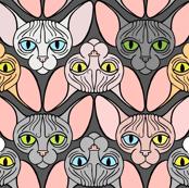 Sphynx Cat Chevron Grey Background