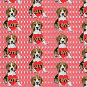 Beagle_Puppy_Valentine