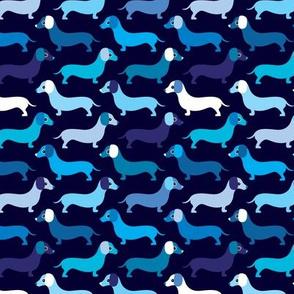 Blue boy doxie dog dachshund illustration pattern