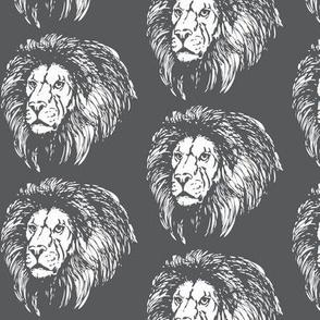 Gray Lions
