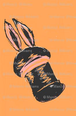 Where Is My Rabbit?