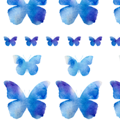 a row of butterflies - white