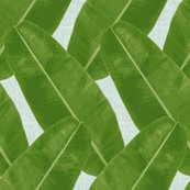 Rbanana_leaf_pattern_revised_shop_thumb