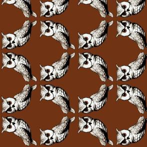2 owls on bark brown