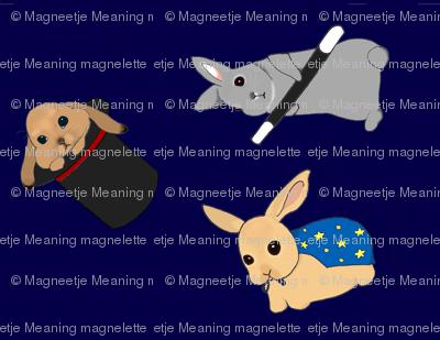 Bunny Magic