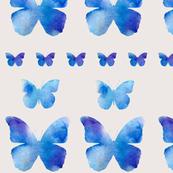 A row of butterflies - neutral