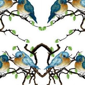 rectangle_birds
