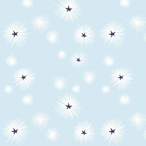 Urchins_at_Sea