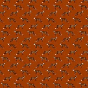 Mr Fox on Ochre Red