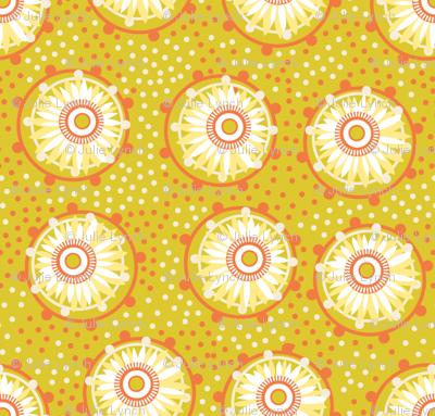 hot paper daisies