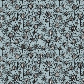 sea holly on steel blue