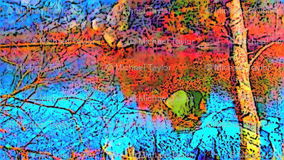 Colored Lake Trees