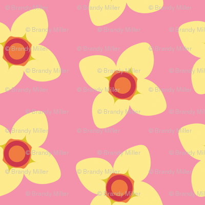 Yellow Blossoms in PInk