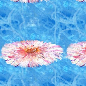 4x4_inch_pink_daisy