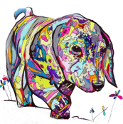 Large Rainbow Dapple Dachshund Print