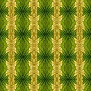2640P knotty