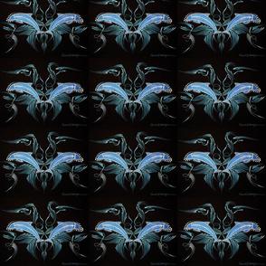 dolphinSymmBig