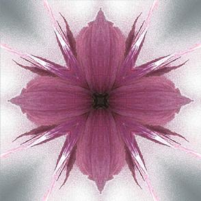 Windflower 4