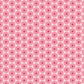 Pink Dasies