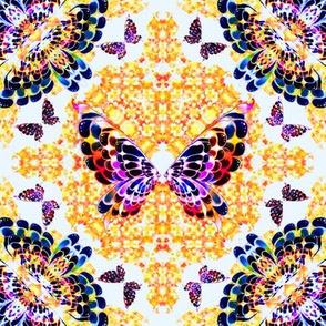 60_Multibright_Butterflies_pt1