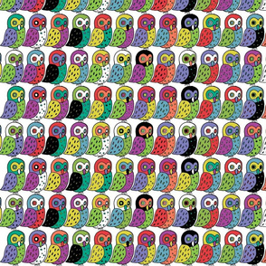 elf owls in rainbow