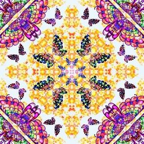 70_Multibright_Butterflies_pt1