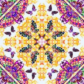 71_Multibright_Butterflies_pt1