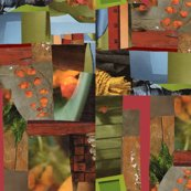 Collage_2_for_sf_shop_thumb