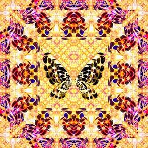 106__Multibright_Butterflies_pt1