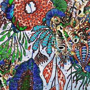 Seaweeds