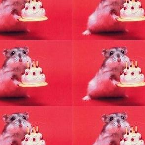 Hamster Birthday Paper
