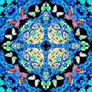 64_Multibright_Butterflies_pt1